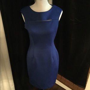 Calvin Klein Royal Blue Sheath Dress